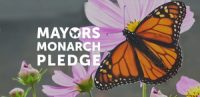 Mayors Monarch Pledge Logo 001
